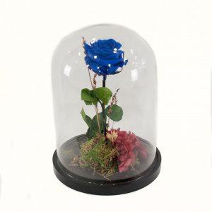 Rosa eterna Azul a domicilio en madrid