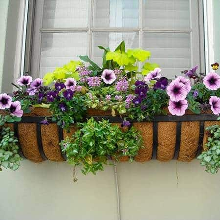 Decoración de terrazas con jardineras de plantas en Madrid.